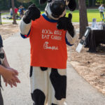 Chic Fil A Cow